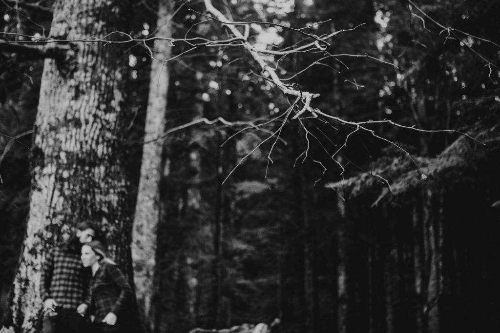 Engagement photography in Forest