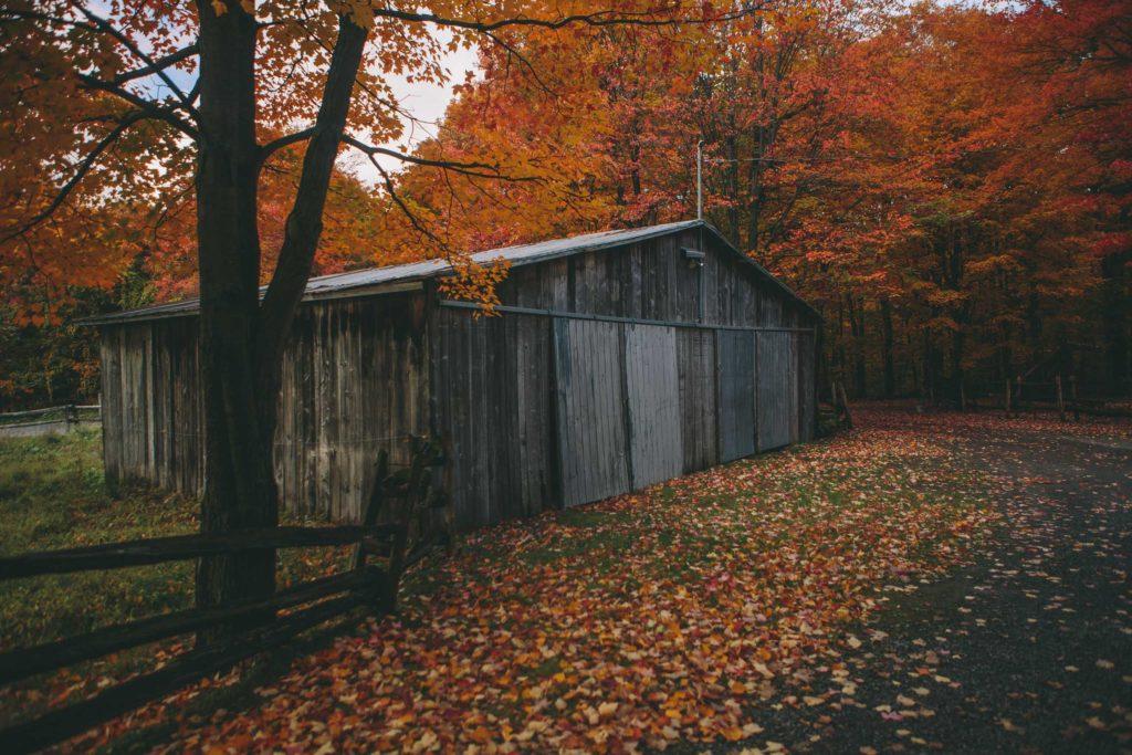 0056-studio-fotografico-bacci-canada-montreal